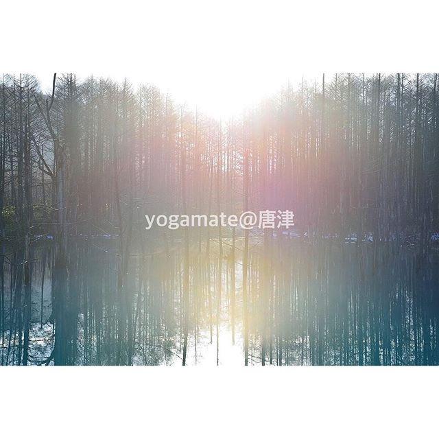 唐津でyogaをはじめるなら。・楽しく無料体験 ♪⇩⇩⇩⇩⇩http://yogamate.016.link/#唐津ヨガ#yogamate#初めての方も心地よく