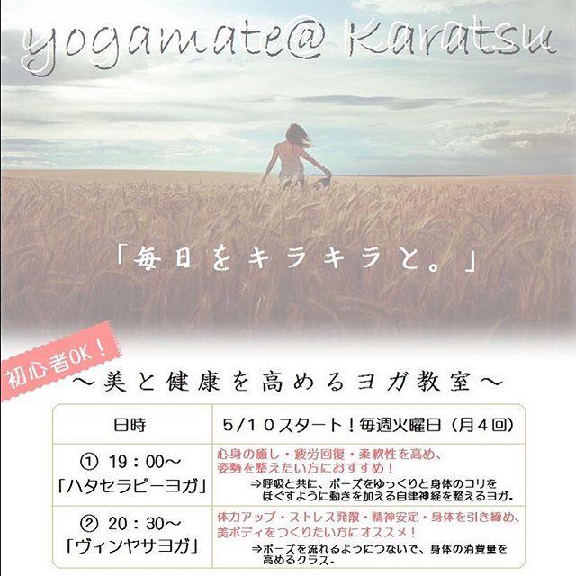 新yogaレッスン開講します・体験(無料)されたい方は、メッセージでお気軽にお申し込み下さいね・詳しくはこちらまで!⇩⇩⇩⇩⇩http://yogamate.016.link/