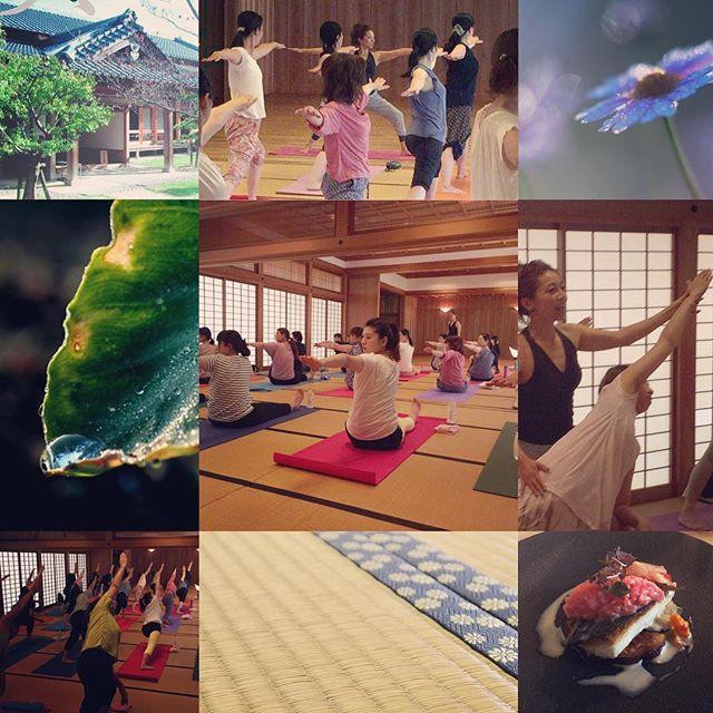 第1回目の『爽yoga』 ご参加頂きましてありがとうございました 久々お会い出来る方も多く嬉しかったですこれからも皆さまの健康な身体と心づくりのお手伝いが出来ますように!第二回の『爽yoga』は、10/2(日)になりますまたお気軽にご参加下さいhttp://yogamate.016.link/#唐津 #yogamate #爽yoga