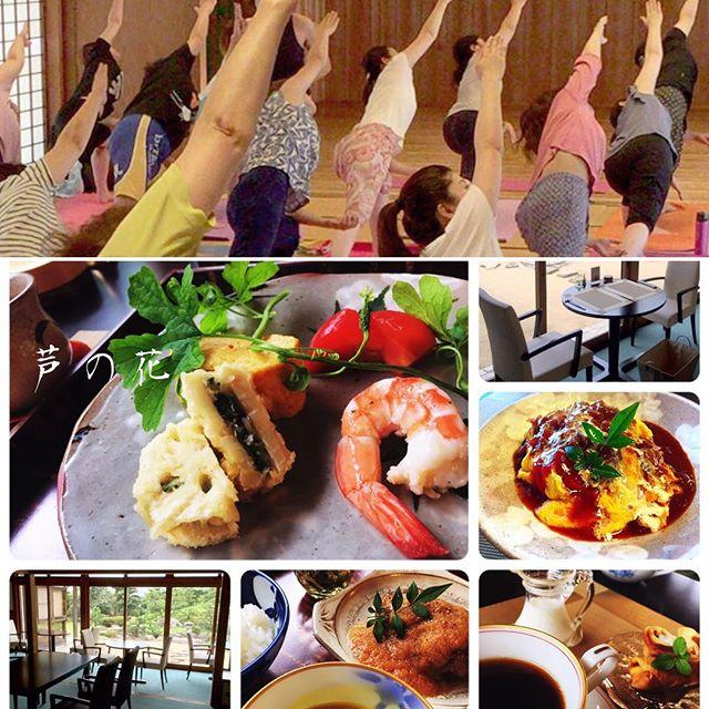 10/2(日)の《爽yoga》どなたでも気軽に参加出来る気持ちよく身体をほぐすヨガです心と身体が喜ぶ易しい動きは初めての方にもオススメします更にご希望の方は、yogaの後に美味しいランチをご一緒しませんか?今回は、会場(埋めの門館)の裏の『芦の花』-アシノハナをご予約します ステキなお庭を眺めながら素材を大事にしたお料理もぜひ味わってみてくださいね🏵 《爽yoga》のご予約/お問い合わせはメッセージ又は、お電話でご連絡くださいませ🏵🏵 麻生かおり0801725741710/2(日) 爽yoga9:00open /9:20start会場: 埋めの門館参加費: ¥1,000http://yogamate.016.link/