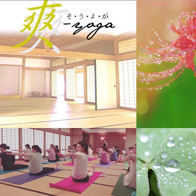 朝から心身を整える《爽yoga》 2回目の明日は、AM 9:00 openになっておりますお申し込み下さった皆様、心よりお待ちしております 「yogamate@唐津」http://yogamate.016.link/