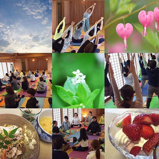 第3回目の「爽yoga」沢山のご参加、ありがとうございました・#爽yoga #唐津ヨガ #参加費は熊本震災の義援金へ